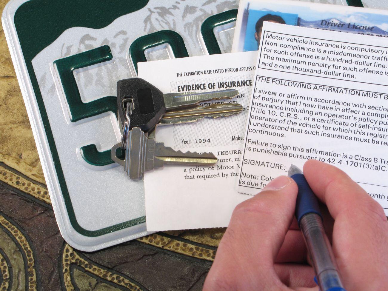 A Beginner's Guide to Car Insurance | WalletGenius